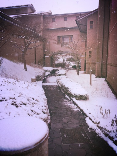 The stunning seasonal changes at Nichibunken. Photo Courtesy of Hannah Bayley